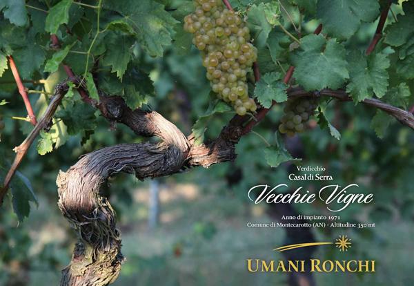 Napoli: ripartono i Wine Lab della Città del gusto