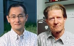 Premio Nobel per la Medicina a Yamanaka e Gurdon