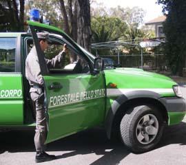 Mazzette al Corpo Forestale, due arresti nel Salernitano