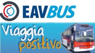 Fallimento EavBus 5 / Adesso si cercano i responsabili del crac