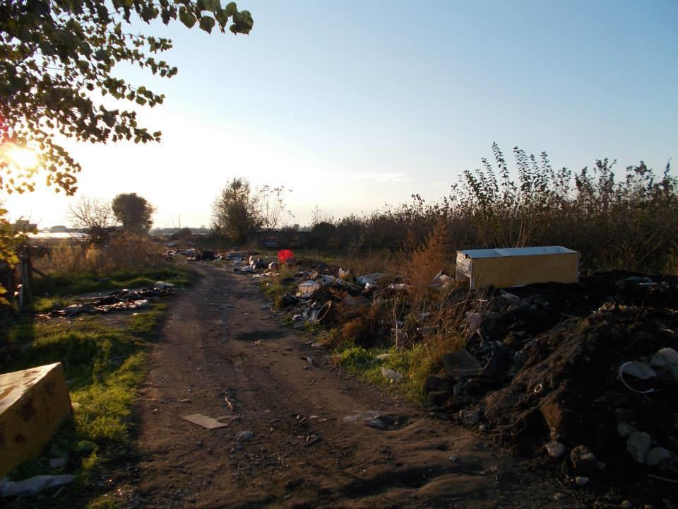 Scafati, coltivazioni nella discarica. Qualcuno intervenga