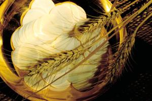 03-eucarestia-ostie-grano