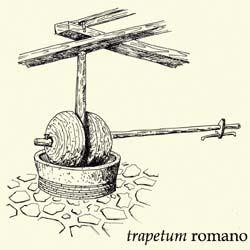 trapetum