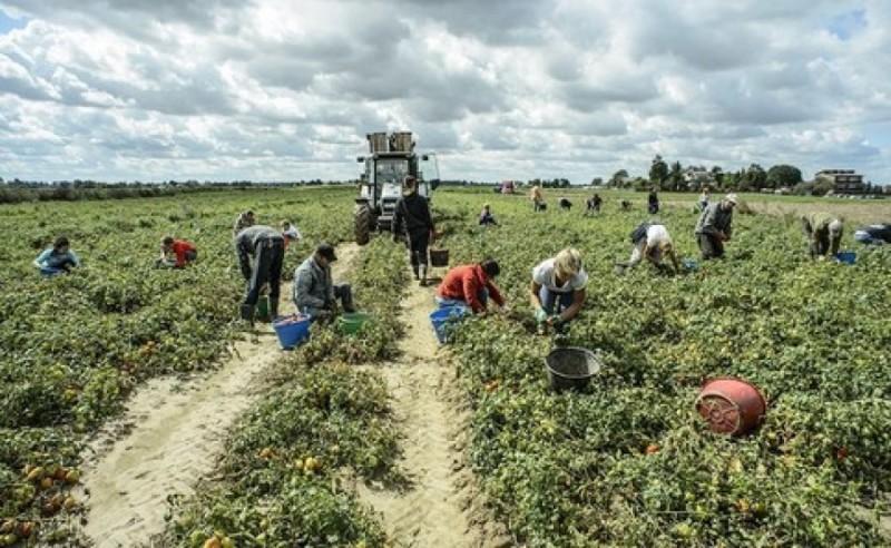 In Italia e in Europa costruiamo l'alternativa allo sfruttamento